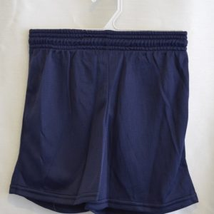 Navy Gym Mesh Shorts