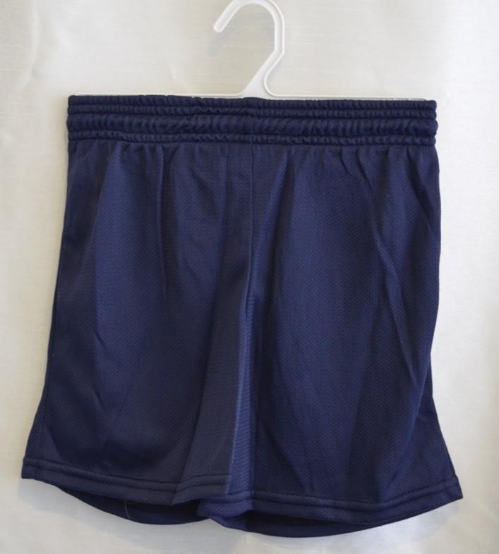 Navy Gym Mesh Shorts