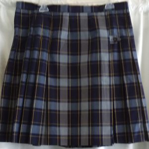 Blue and Yellow Plaid Kilt